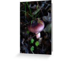 Just poppin' to say hello! Greeting Card