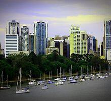 Brisbane  by Shannon O'Brien