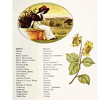 Language of Flowers Kate Greenaway 1884 0019 Descriptions of Specific Flower Significations Photographic Print