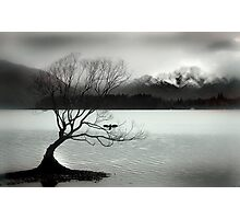 Wanaka Photographic Print