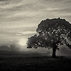 Kissing the fog away by clickinhistory