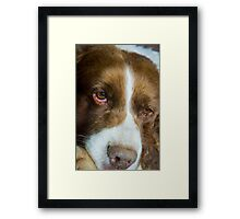 oh the worries of the world ho hum Framed Print