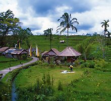 Balinese Village by Peter Doré