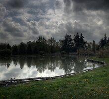 Reflections by Davide Ferrari