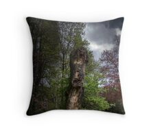 ancient majesty Throw Pillow
