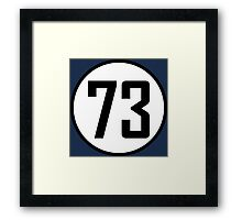 73 - as seen on TV - Sheldon Cooper Framed Print