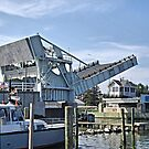 Tilghman Island Drawbridge by Monnie Ryan