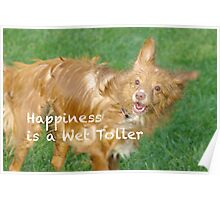 A Wet Toller is a happy Toller Poster