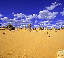 Pinnacles Western Australia by Trip69