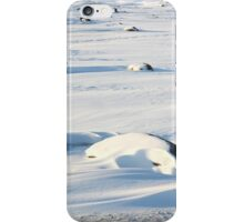 Early Morning on the Tundra #2, Churchill, Canada iPhone Case/Skin