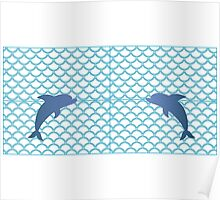 Scales   Dolphin Poster