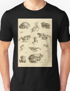 The Reptiles of British India by Albert C L G Gunther 1864 0531 Frogs Unisex T-Shirt