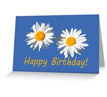 two lovely white daisy flowers  happy birthday floral photo art. Greeting Card