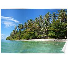 Beach with beautiful tropical vegetation Poster