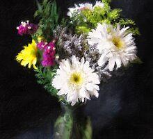 Gerbera Daisy 14 by Christopher Johnson