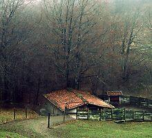 The forgotten house by TaniaLosada