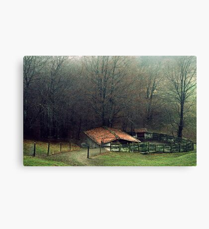 The forgotten house Canvas Print