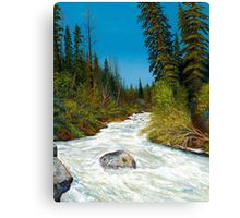 """Spring Creek""  in the wilderness Canvas Print"