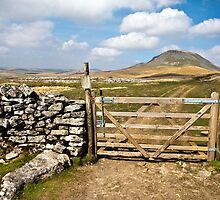 The gate to Pen-y-ghent by Shaun Whiteman