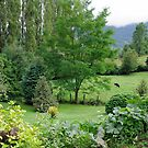 Chilean Countryside by Daidalos