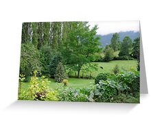 Chilean Countryside Greeting Card