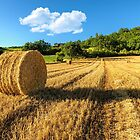 Straw Bales by TonyPriestley