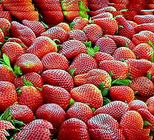 Red Ripe Strawberries! by paintingsheep