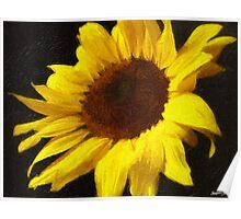 Sunflower 4 Painterly Poster