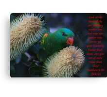 Even The Birds He Gives Provision For Canvas Print