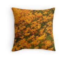 beautiful California poppies Throw Pillow