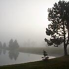 Foggy morning in Ann Arbor, Michigan by Robert Kelch, M.D.