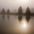 Foggy morning in Ann Arbor, Michigan by Robert Kelch, M.D.