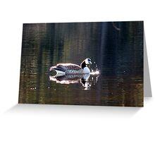 Water World - Sunbathing Greeting Card