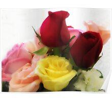 Mixed Cut Roses 2 Poster