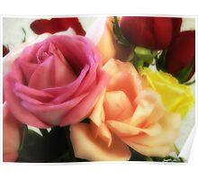 Mixed Cut Roses 3 Poster