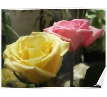 Mixed Cut Roses 5 Poster
