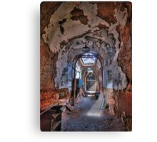 Holes in the Walls Canvas Print
