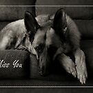 I Miss You - I'm Waiting For You 1 by AngieM