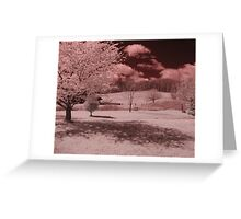 Untitled IR #3 Greeting Card