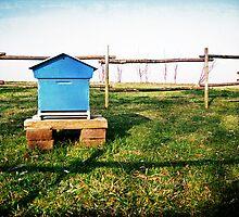 Little Blue House by Moetran