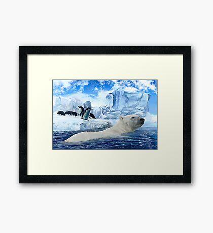 How Can a Polar Bear This? Framed Print