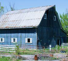 Blue barn by David Owens