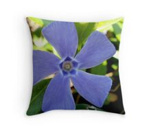 Flower Windmill - Altamont Gardens Co. Carlow Throw Pillow