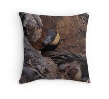 Nesting Goose Throw Pillow