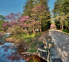 Spring at The Morton Arboretum by Joe Thill