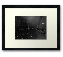 Water storage spider style Framed Print