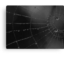 Water storage spider style Canvas Print