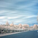 Geyser road in infrared 2 by Paul Mercer