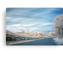 Geyser road in infrared 2 Canvas Print