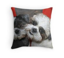 Me and my brother! Throw Pillow
